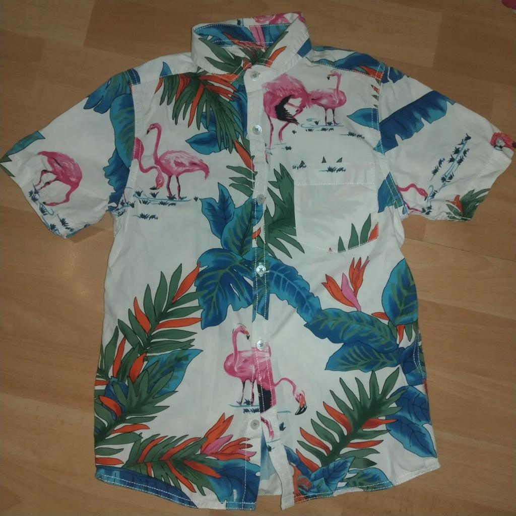 Koszula hawajska next 7 lat