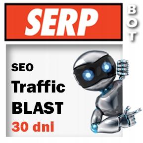 WEB Traffic - nielimitowany ruch na stronie 30 DNI