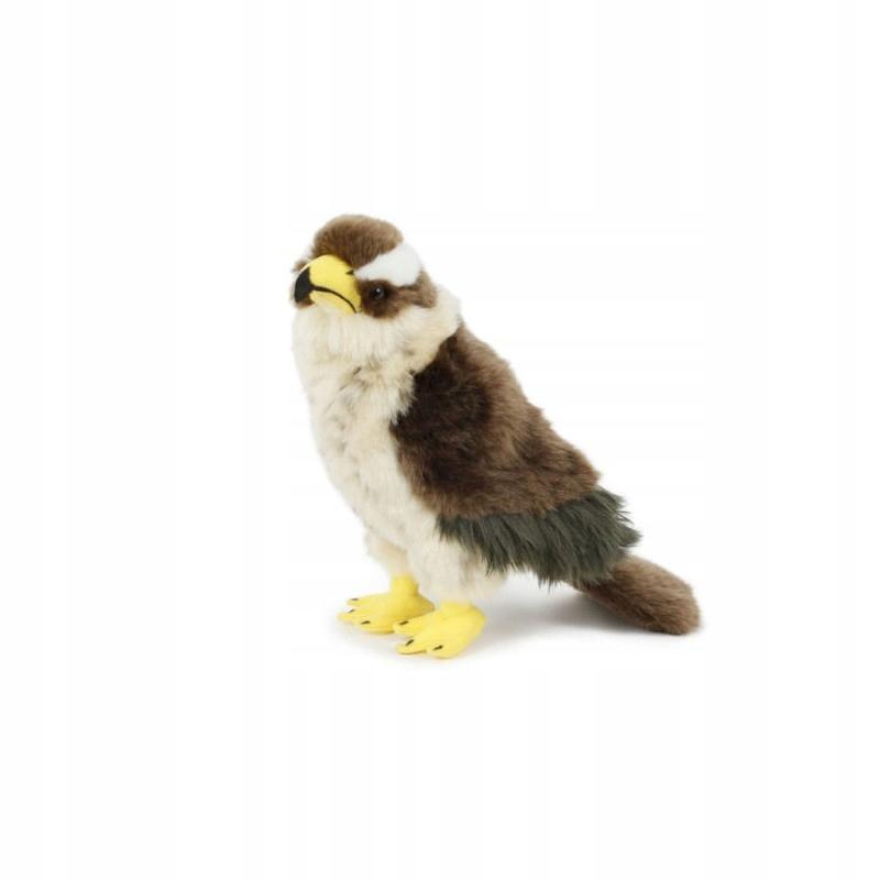 JASTRZĄB maskotka przytulanka ptak młody 23cm