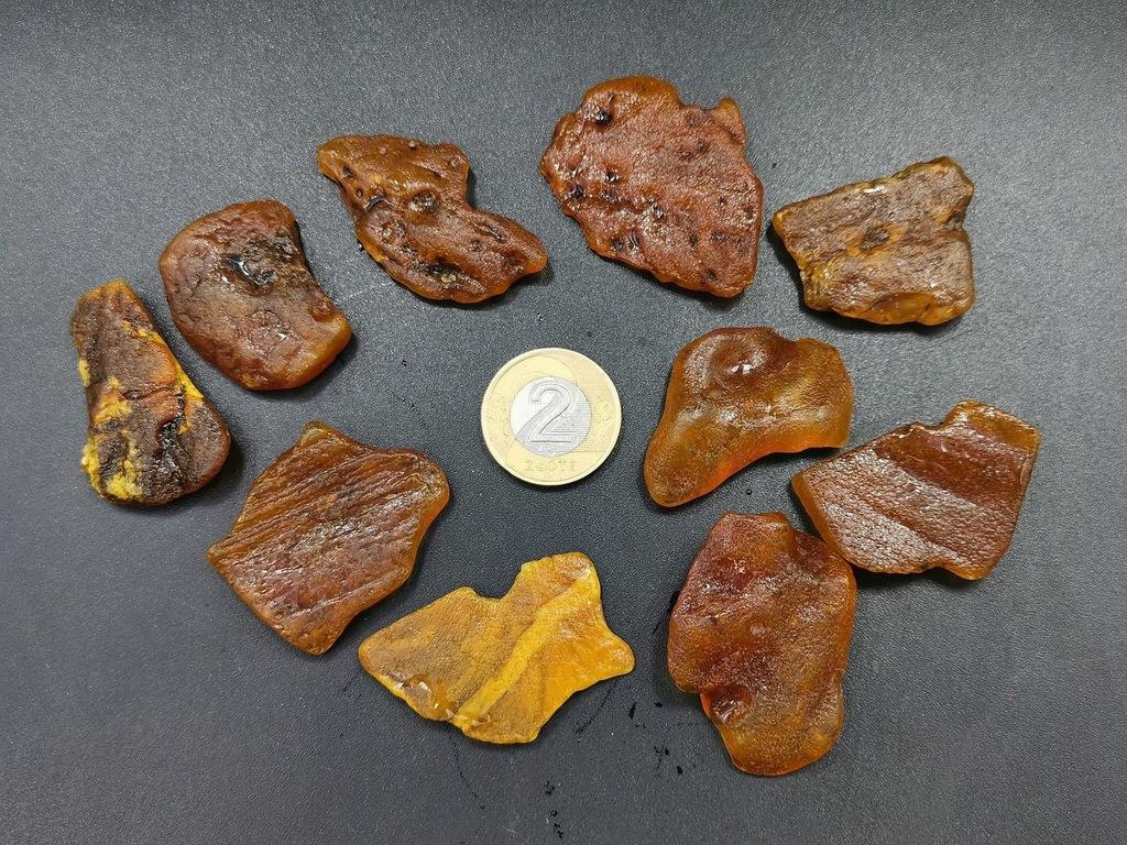 Bursztyn Bałtyk zestaw 29,1g płaskie surowe bryłki