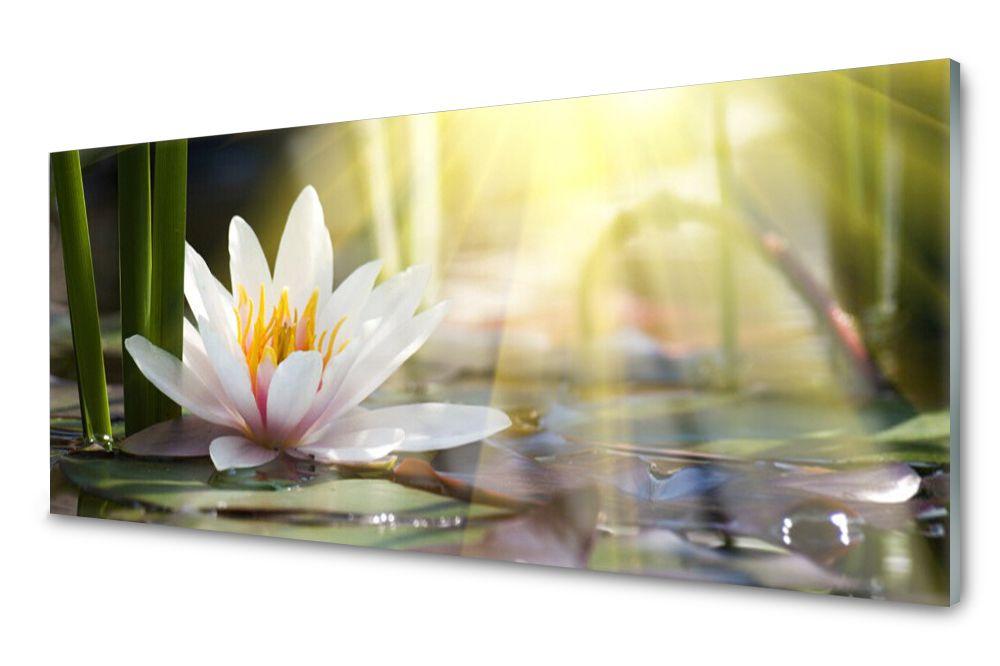 Lacobel Panel Szklany Ścienny Lilia Wodna 120x60