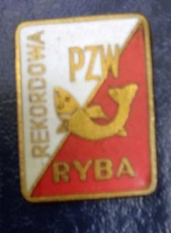 Odznaka wędkarska PZW Rekordowa ryba czerwona