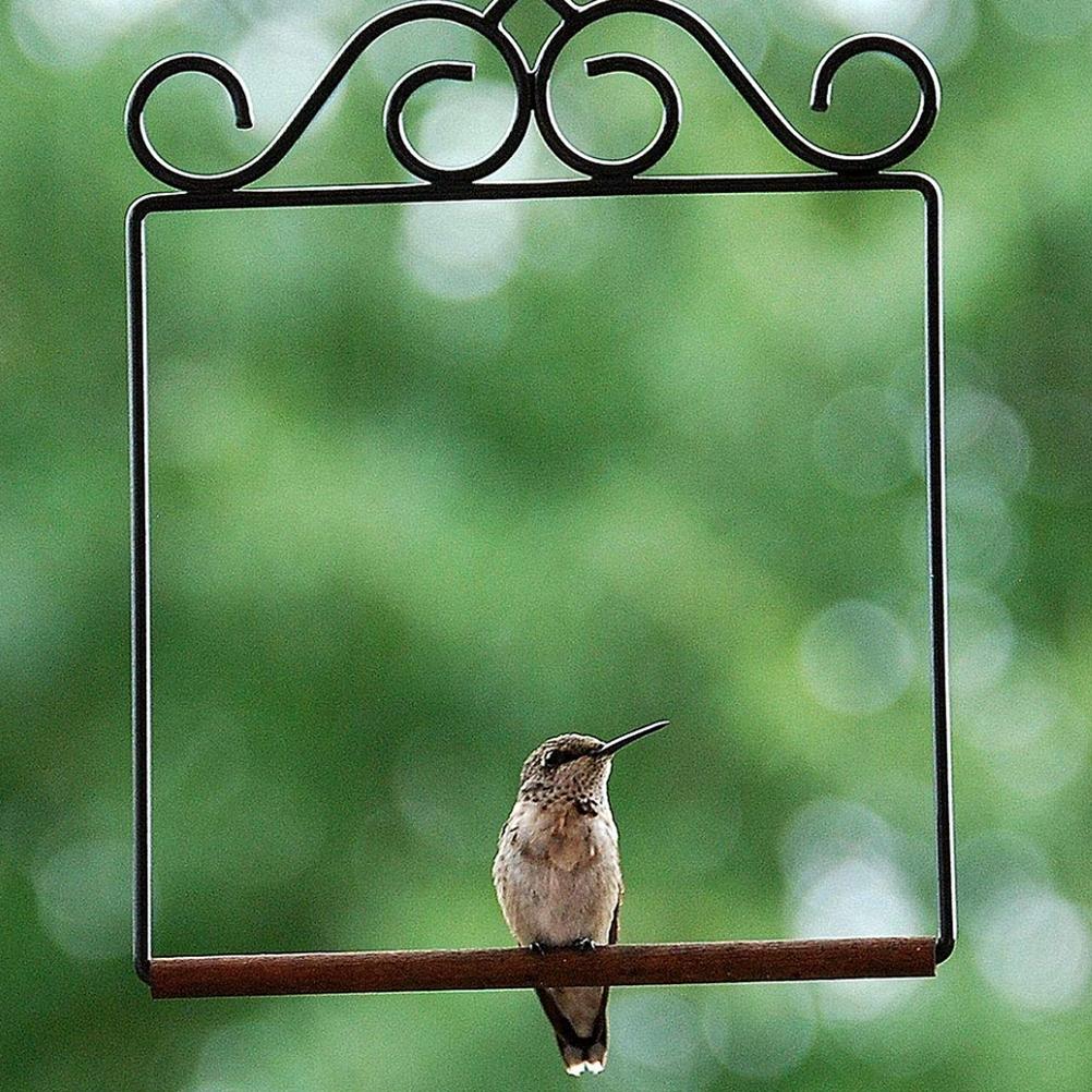 Dekoracyjny metalowy ptak huśtawka zabawka