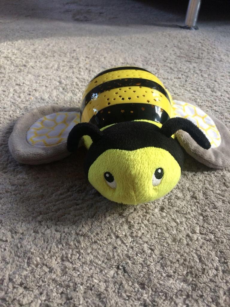 Projektor Pszczoła SUMMER