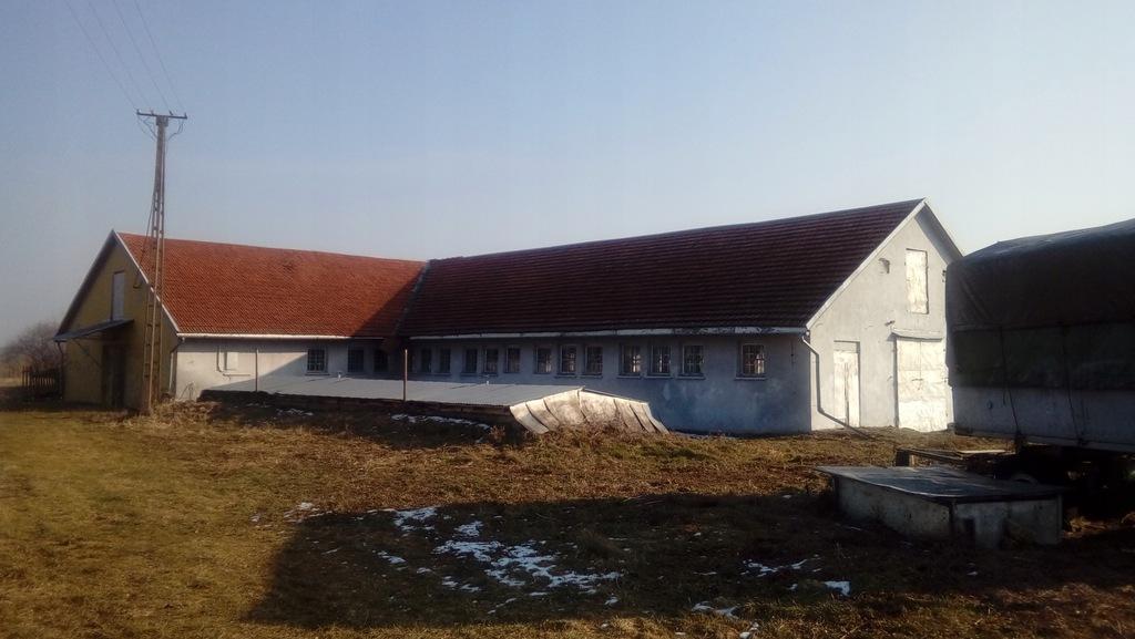 Hala/ magazyn komercyjny o pow. 588 m² na dz. 50ar