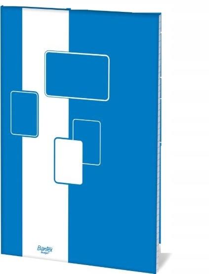 Blok biurowy Bantex A5 kratka 100 kartek budget 5s