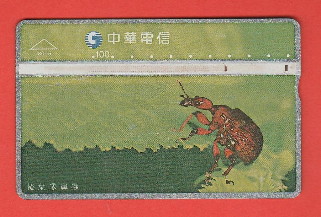 TAJWAN fauna chrząszcz / 8005 / seria 748C