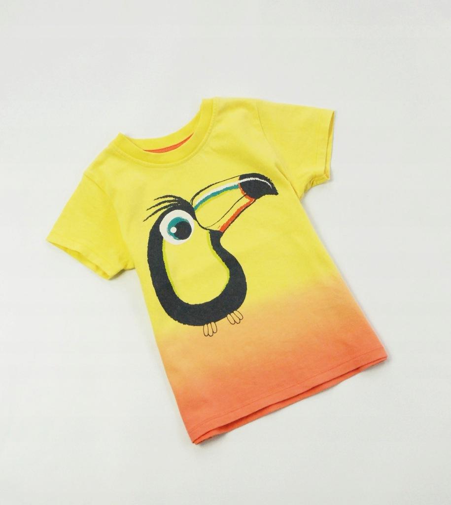 bhs* koszulka boY peLikan lato kolor 98