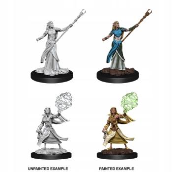 D&D Nolzur's Marv. Min. - Elf Female Sorcerer