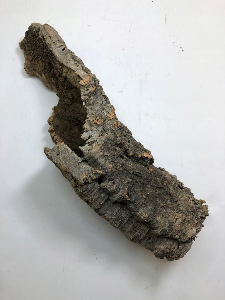 Kryjówka Tuba z dębu korkowego nr U