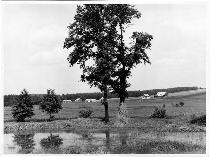 fotografia 1939-44 Pstrążna pow. Rybnik Ein Teil d