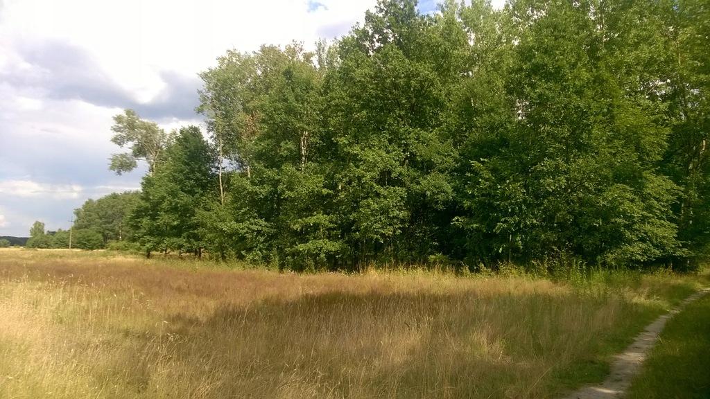 Działka siedliskowo-rolna
