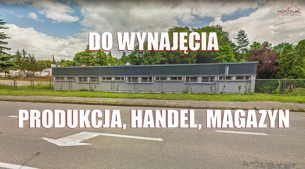 Na wynajem Cieszyn, cieszyński, 390,00 m²