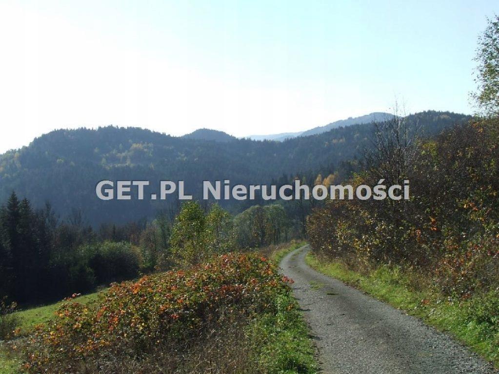 Działka, Zawoja, Zawoja (gm.), 30000 m²