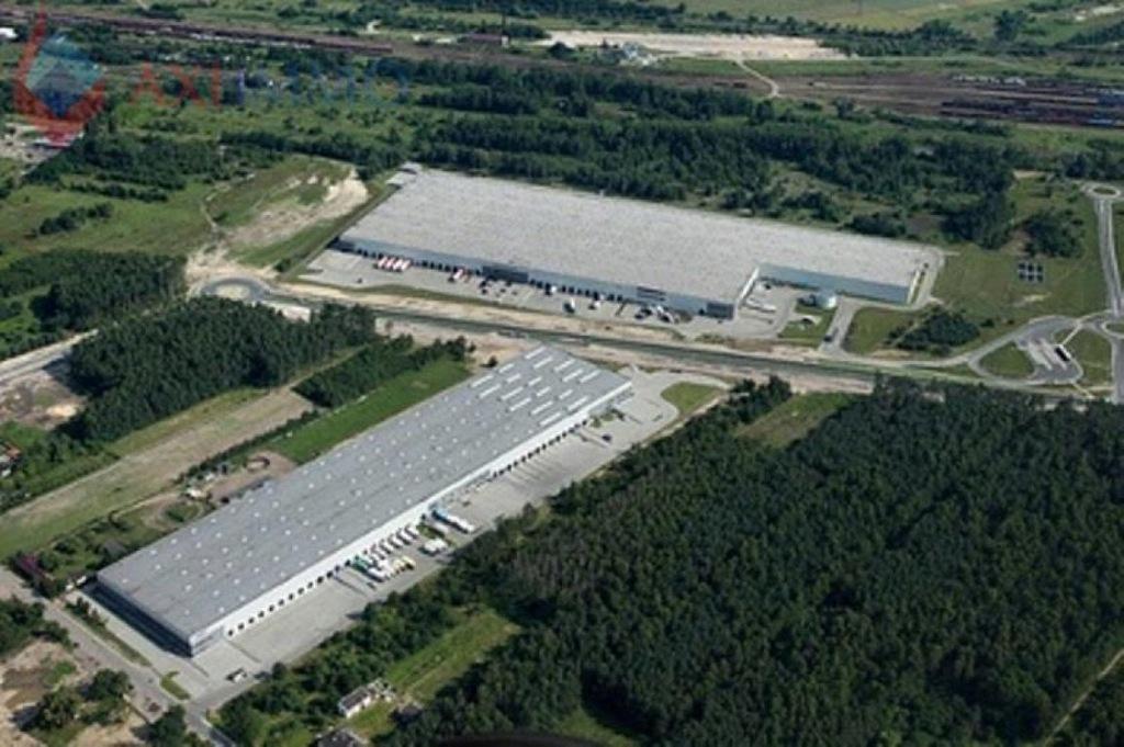 magazyn Łódź, Widzew, 6060,00 m²