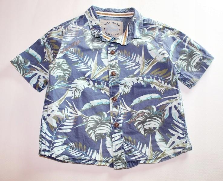 Next Koszula w Palmy Liście Hawajska 80