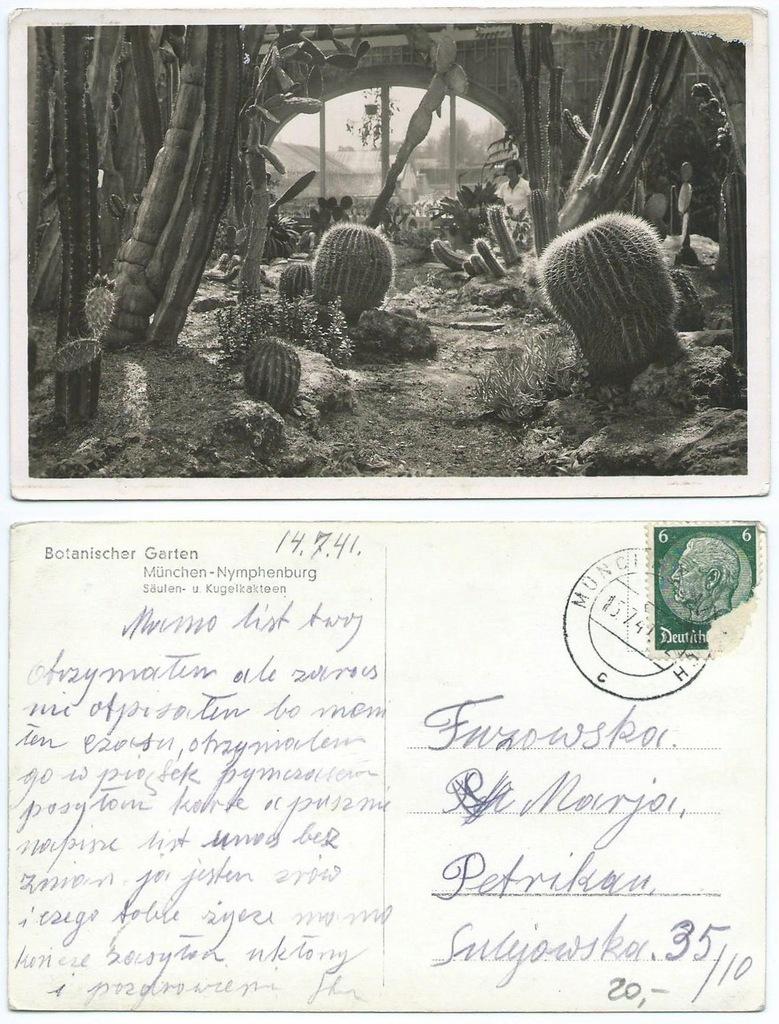 Pocztówka - Kaptusy