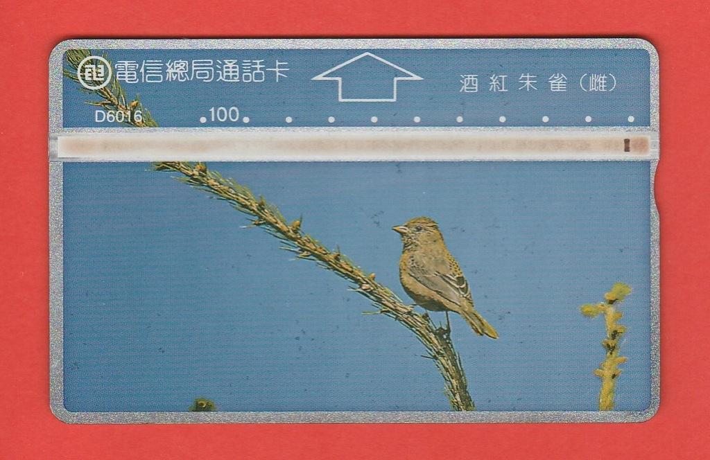 TAJWAN fauna ptak / D6016 / seria 684K
