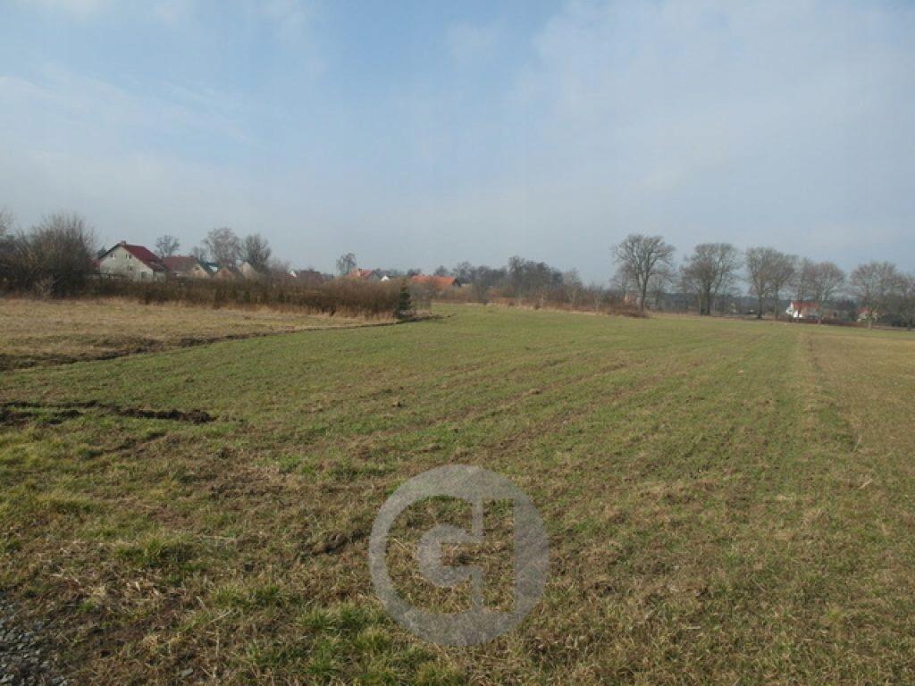Działka, Różanki, Kłodawa (gm.), 3000 m²