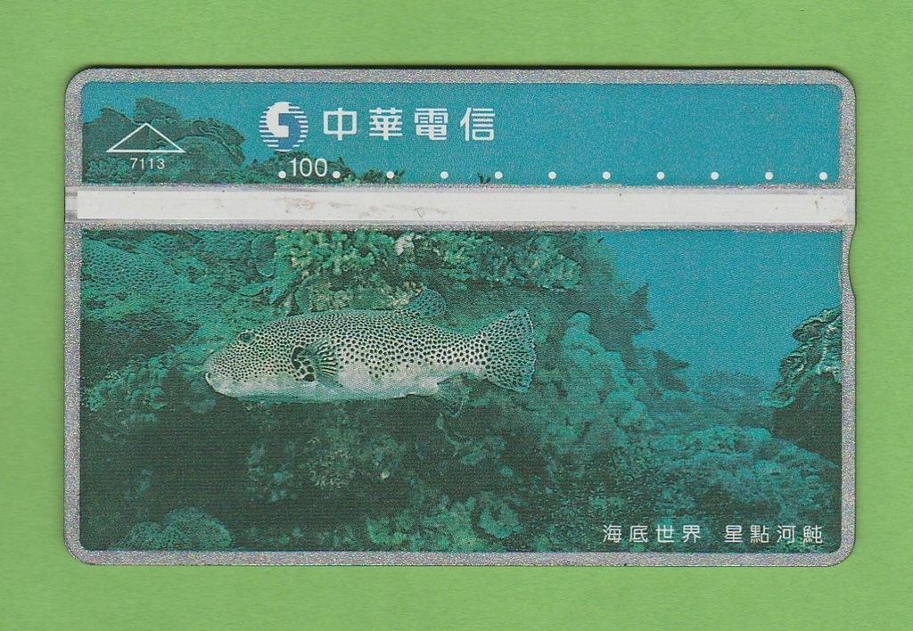 TAJWAN fauna morska ryba / 7113 / seria 770B