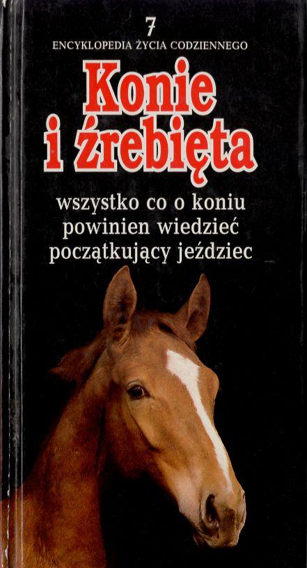 Znalezione obrazy dla zapytania Dorota Modlińska : Konie i źrebięta