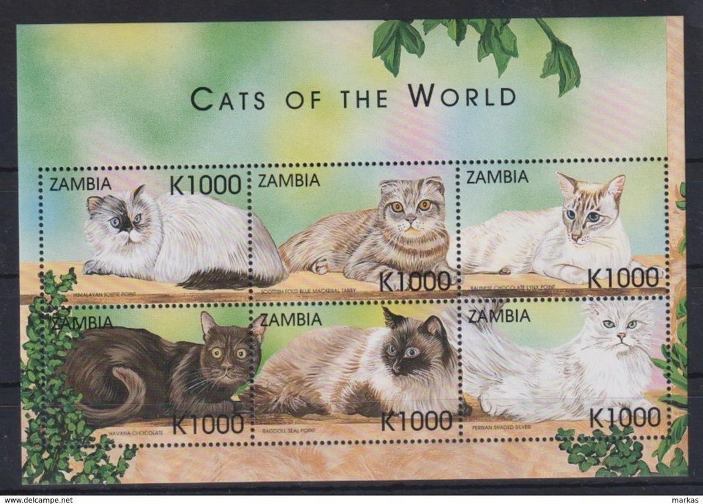 F929. Zambia - MNH - Zwierzęta - Koty