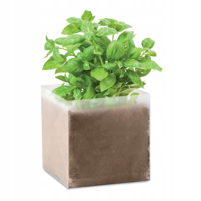 Zestaw do uprawy BAZYLIA zioła