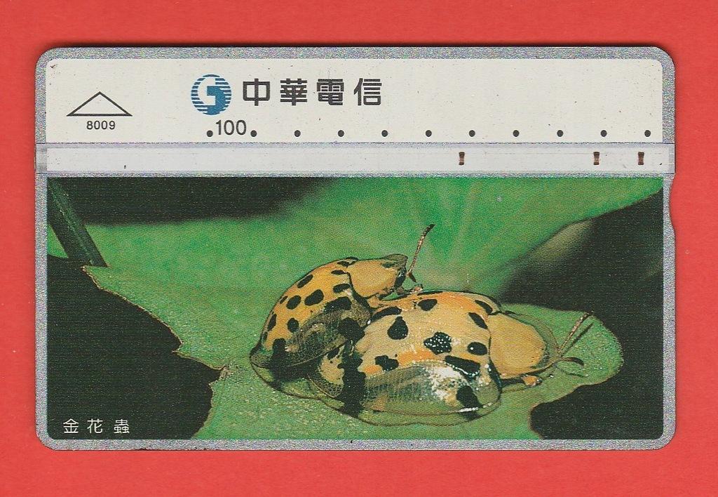 TAJWAN fauna chrząszcze / 8009 / seria 830E