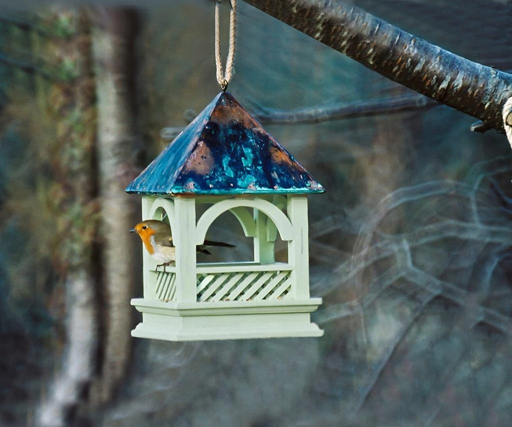 C2 Karmnik dla ptaków Bempton 30x20x20cm