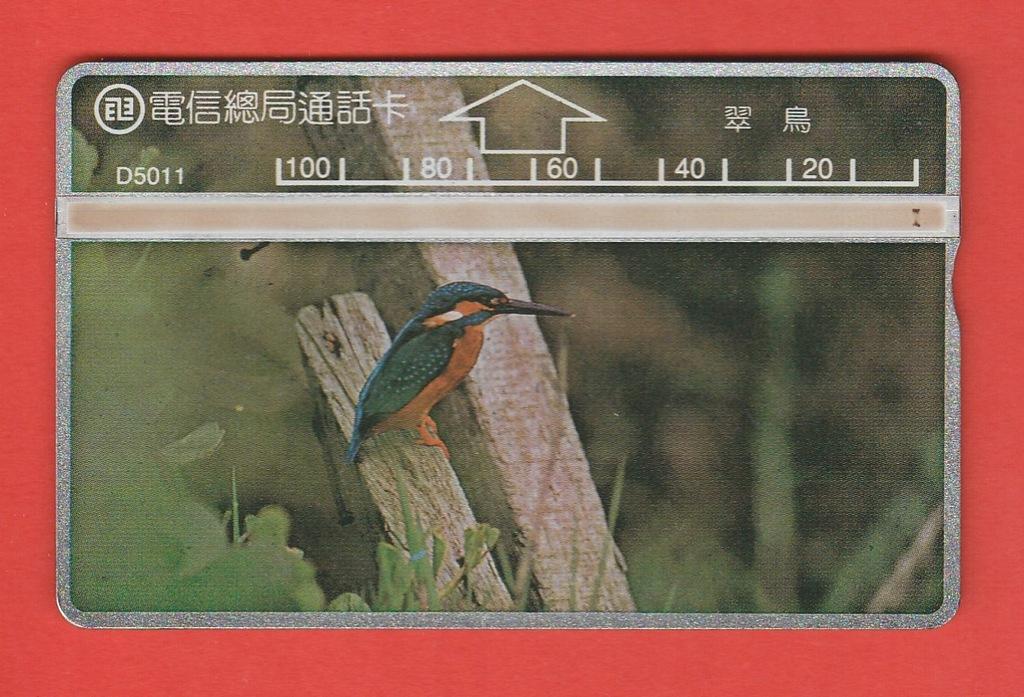 TAJWAN fauna ptak zimorodek / D5011 / seria 502H
