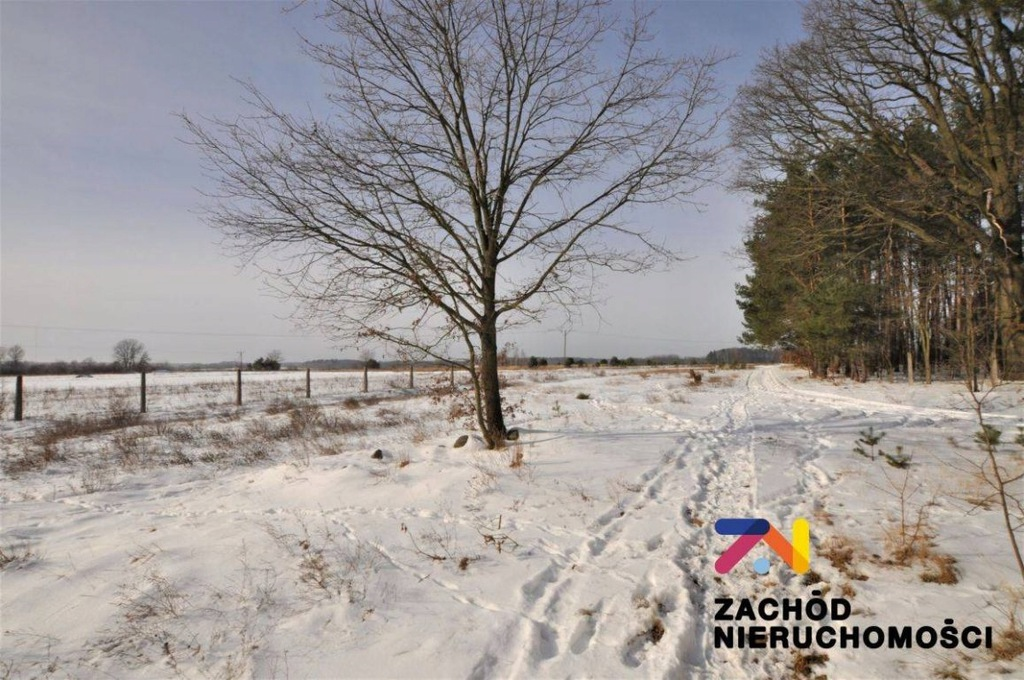 Działka, Mirocin Średni, Kożuchów (gm.), 7600 m²