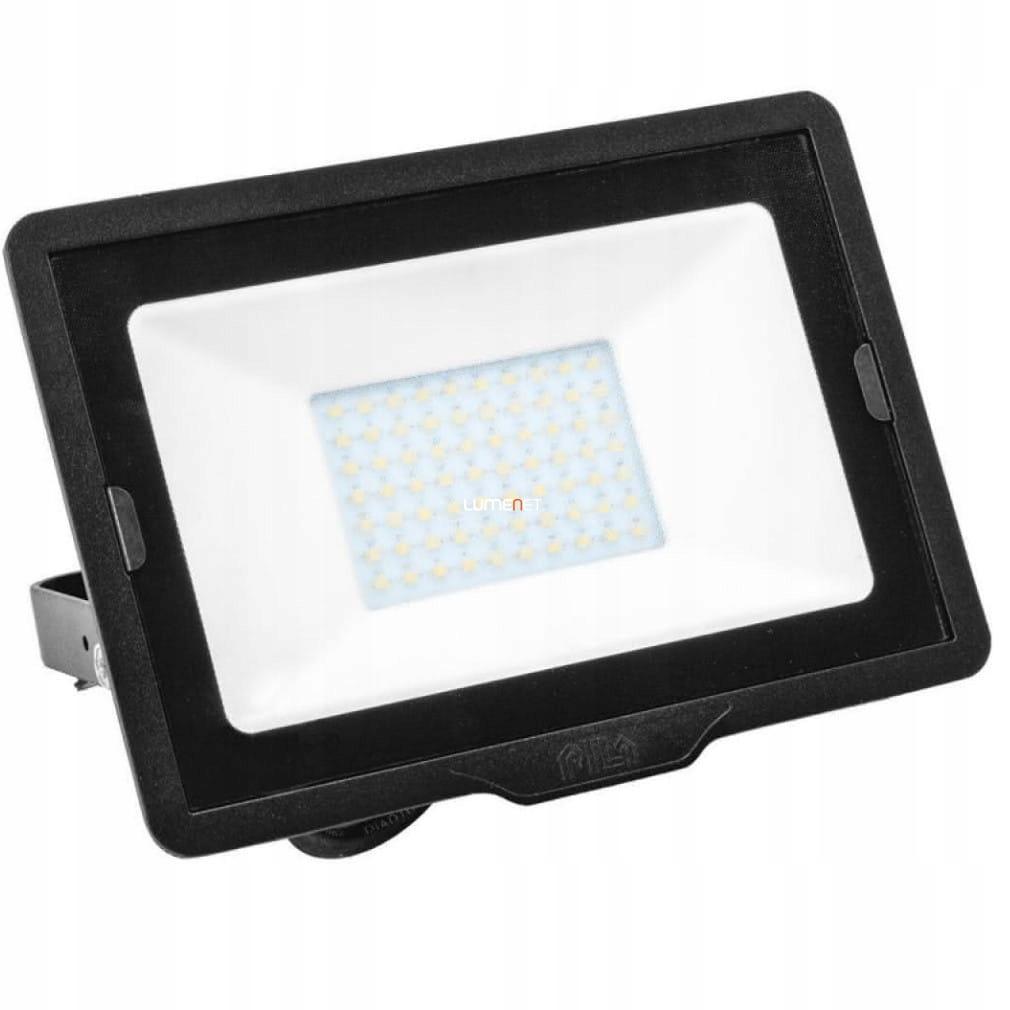 Projektor LED PILA BVP007 10W 4000K 850lm 91140173