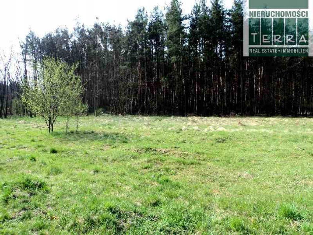 Działka, Świdnica, Świdnica (gm.), 1770 m²