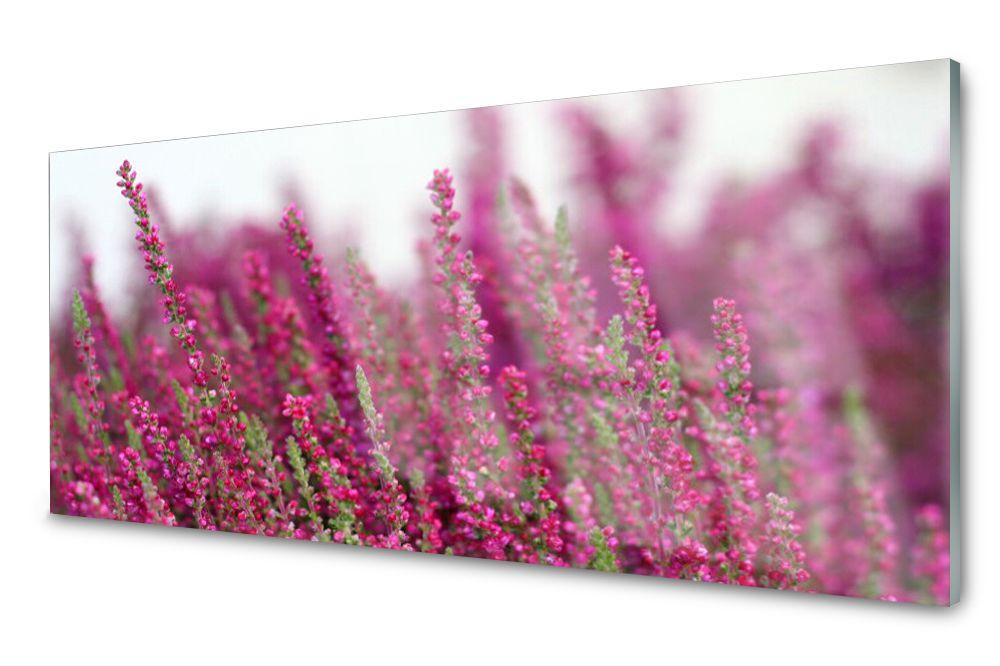 Lacobel Panel Szklany Ścienny Kwiaty Łąka 120x60