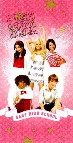 Ręcznik High School Musical 76x152 różowy 5777