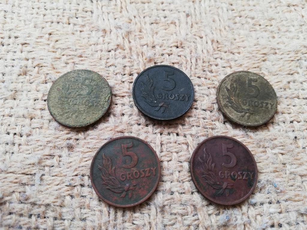 Zestaw starych monet stare monety 5 groszy gr 1949