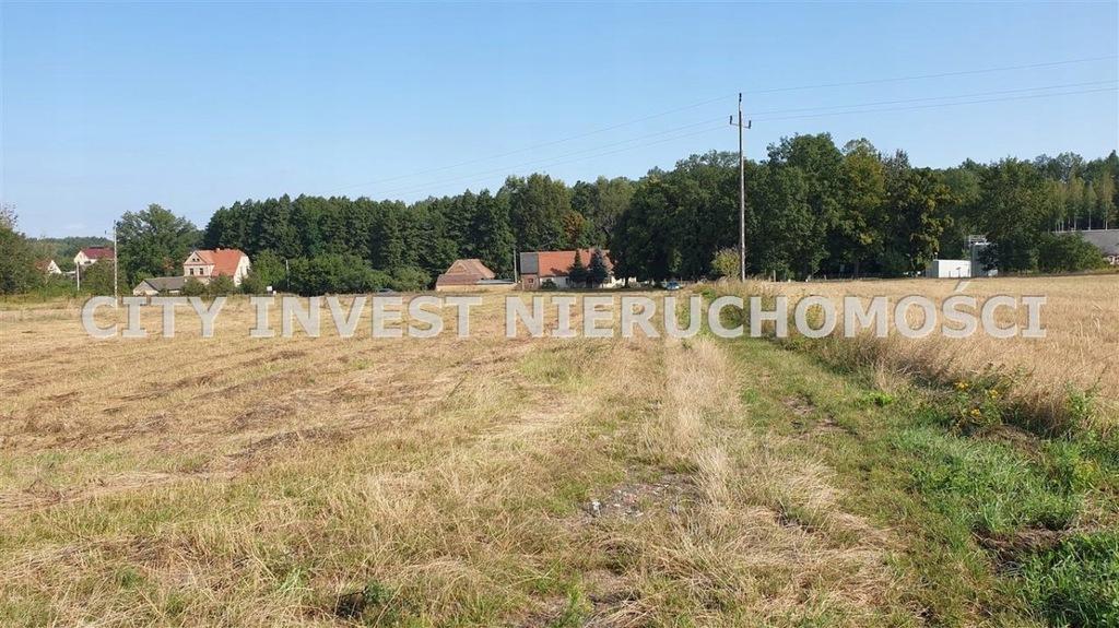 Działka, Trzemeszno Lubuskie, 33153 m²