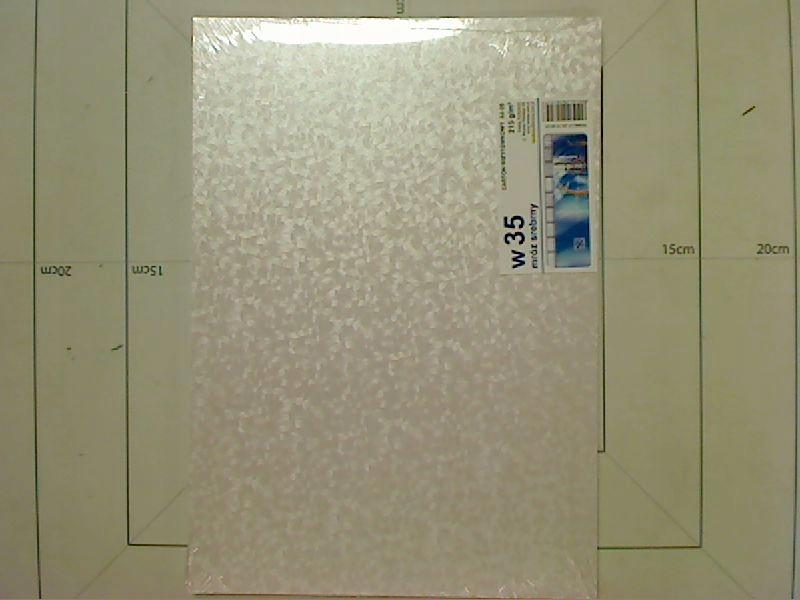 Karton W35 wizytówkowy W35 A4-10 mróz srebrny