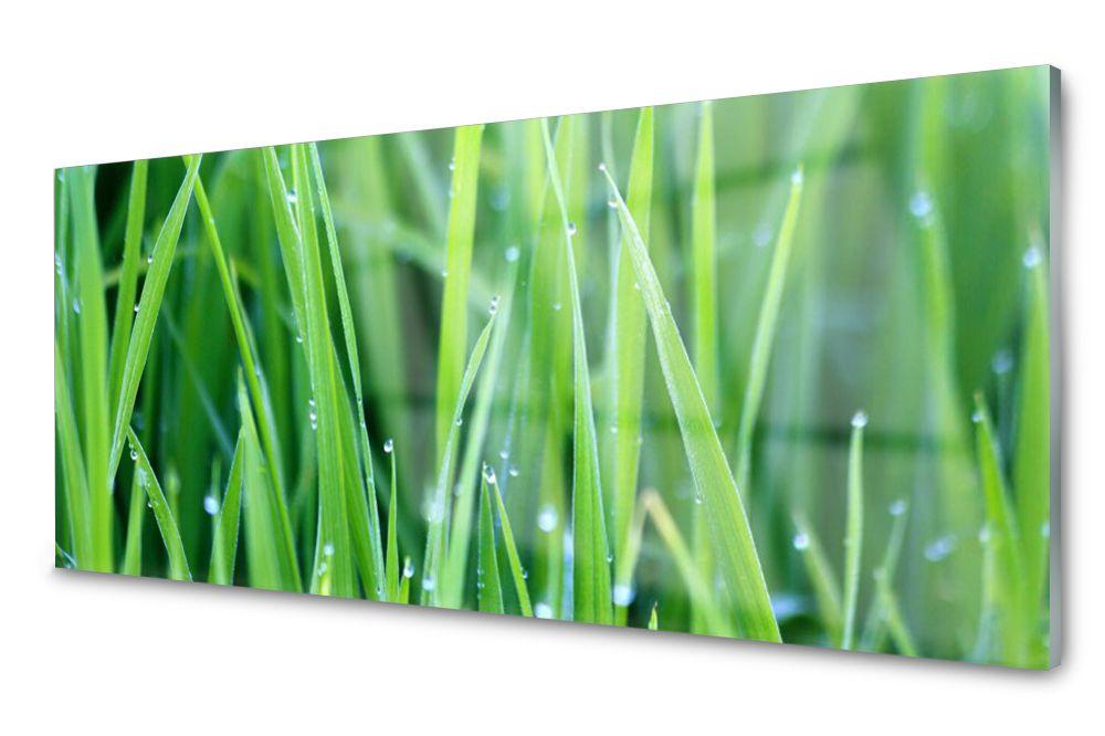 Lacobel Panel Szklany Ścienny Trawa Krople 120x60