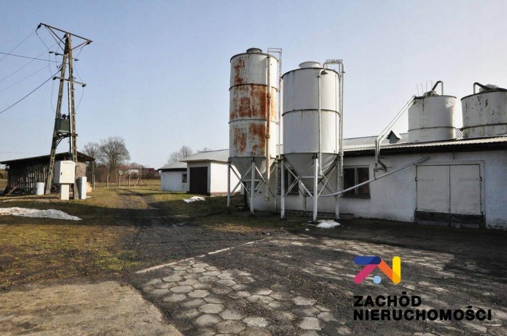 Komercyjne, Łaz, Żary (gm.), 1800 m²
