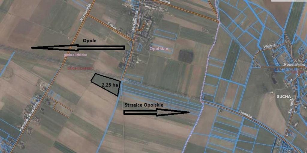 Komercyjne, Suchodaniec, Izbicko (gm.), 22500 m²