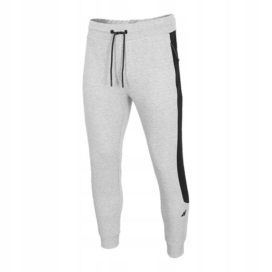 4F (L) Spodnie Męskie