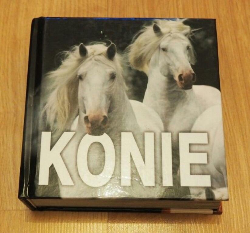 Album Konie Pascal 8359290060 Oficjalne Archiwum Allegro