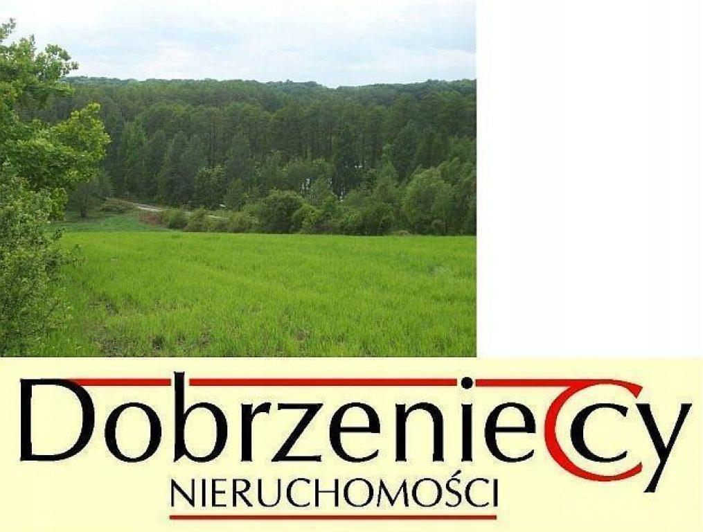Działka Sieraków, międzychodzki, 4075,00 m²