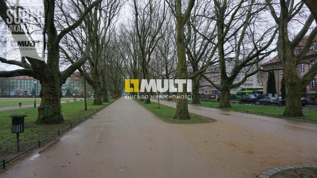 Biuro, Szczecin, 100 m²