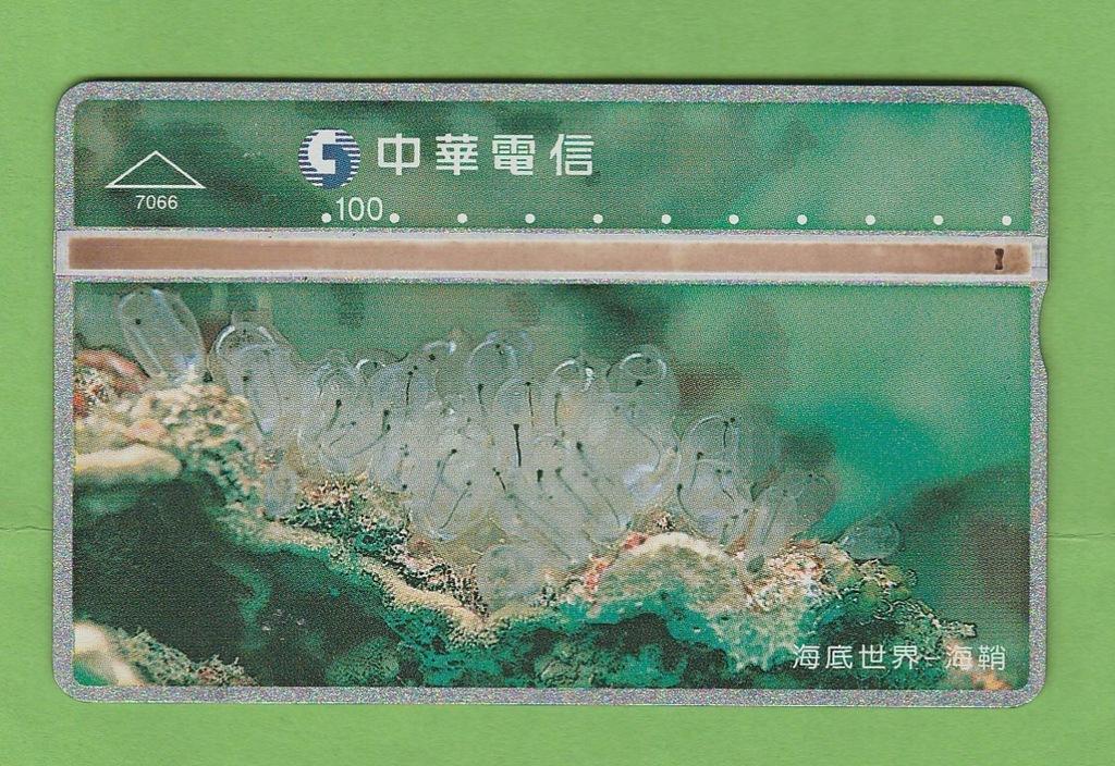 TAJWAN fauna morska / 7066 / seria 706A