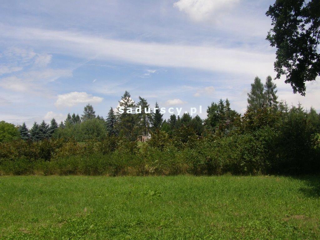 Działka, Kazimierza Wielka (gm.), 80600 m²