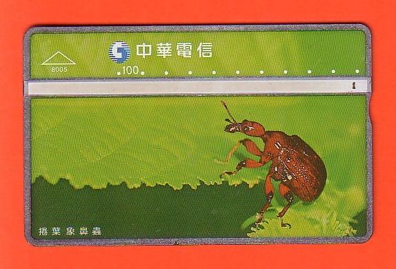 TAJWAN fauna chrząszcz / 8005 / seria 830M