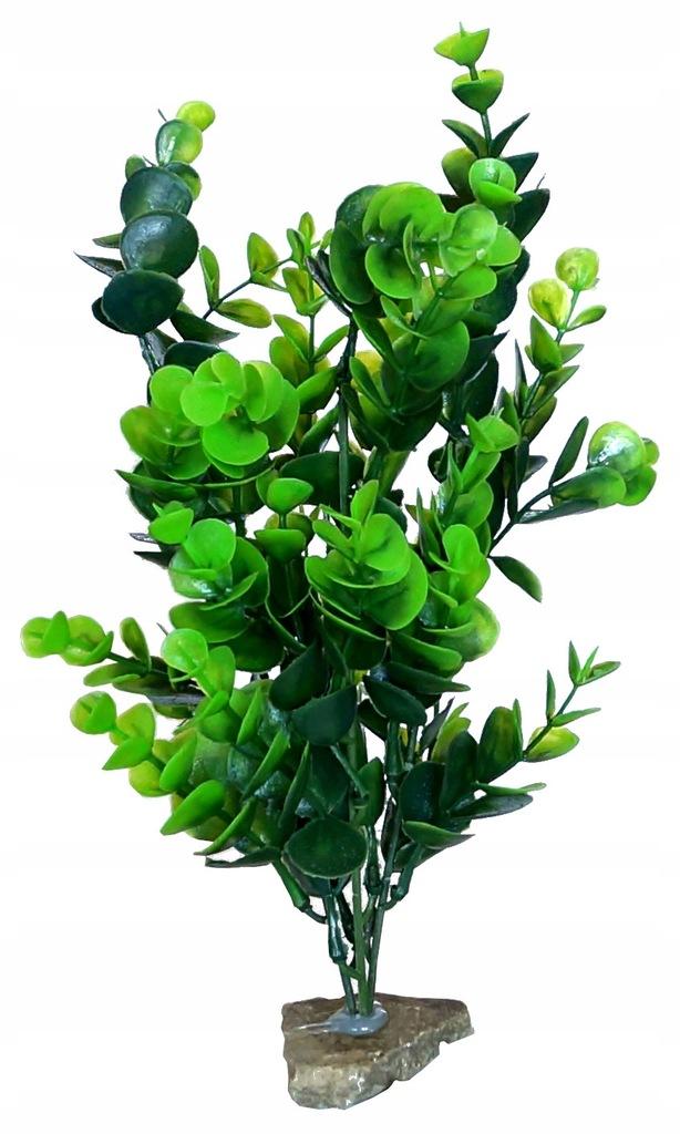 roślinka sztuczna do akwarium 28 cm NOWOŚĆ