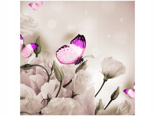 50x50cm Obraz druk Butterflies Paradise motyle kwi